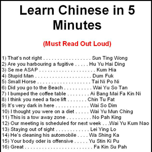 Learn Chinese In 5 Minutes by prince123 - Meme Center