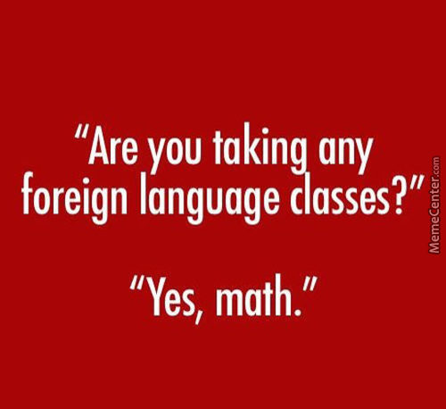 Learning Math Is Kind Of Like Learning A New Language, Only Harder.
