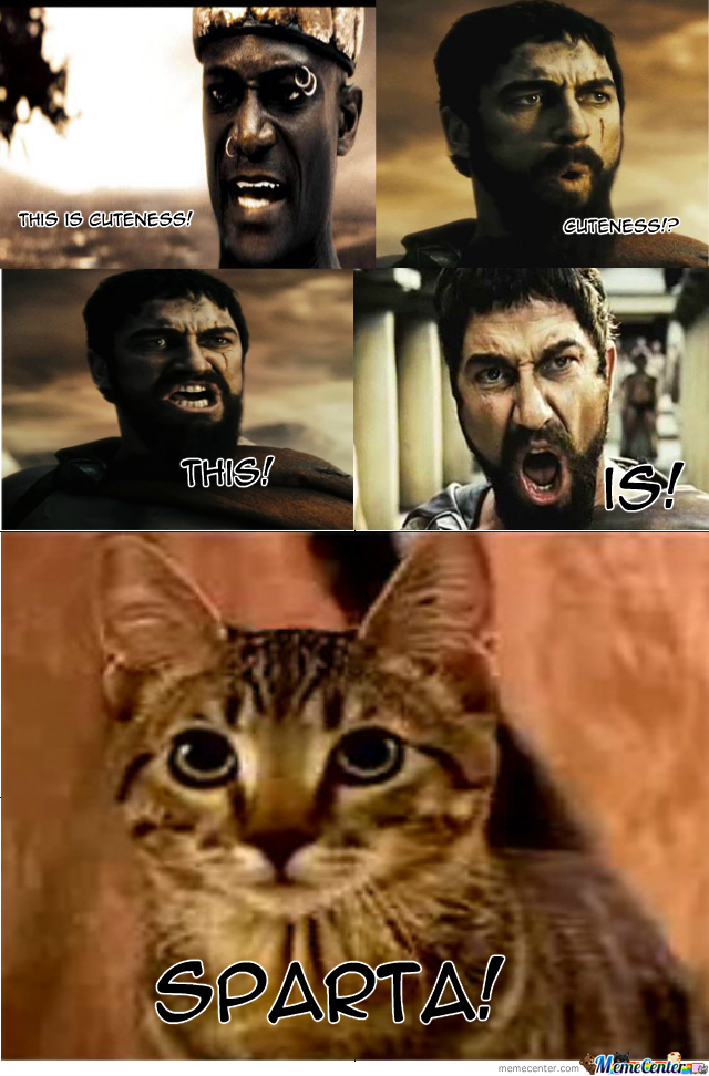 Leonidas And The Mean Kitty.