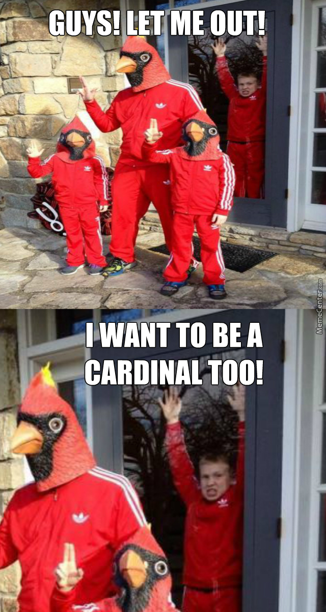 let him be free and fly_o_5608497 cardinals memes best collection of funny cardinals pictures