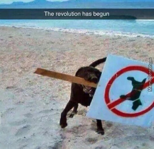 Lets Ruff The System Up.