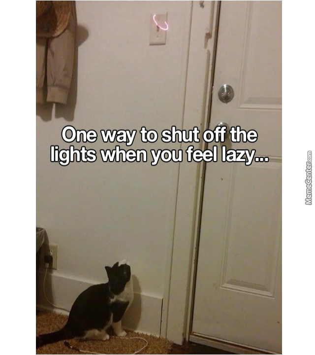 Life Hack .. Or Cat Hack