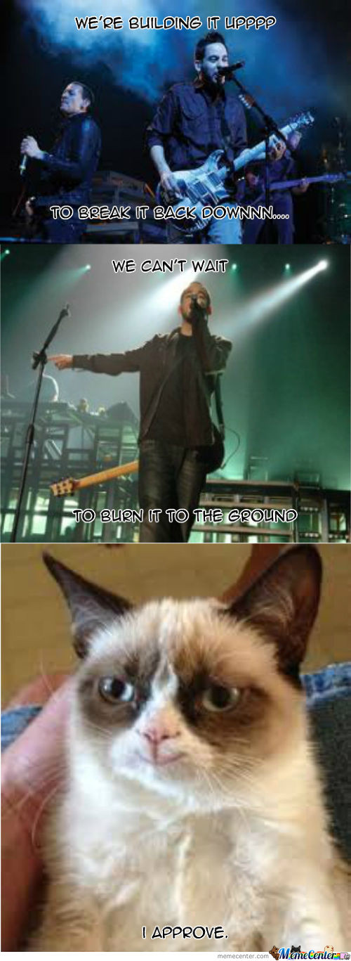 Linkin Cat