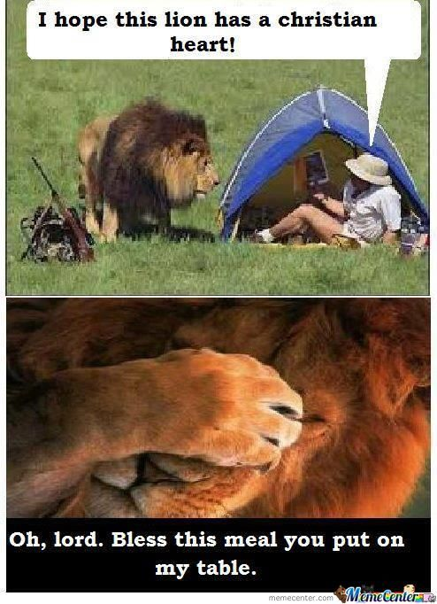 lion_o_683209 lion memes best collection of funny lion pictures