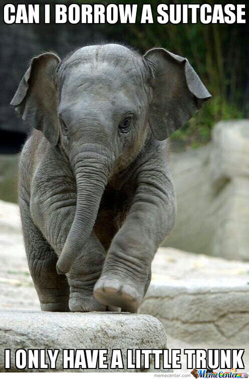 Little Trunk