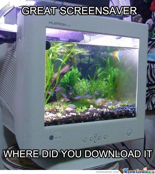 Live Aquarium For Pc