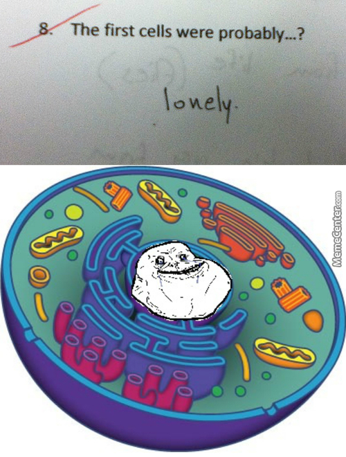 Lonely Cell