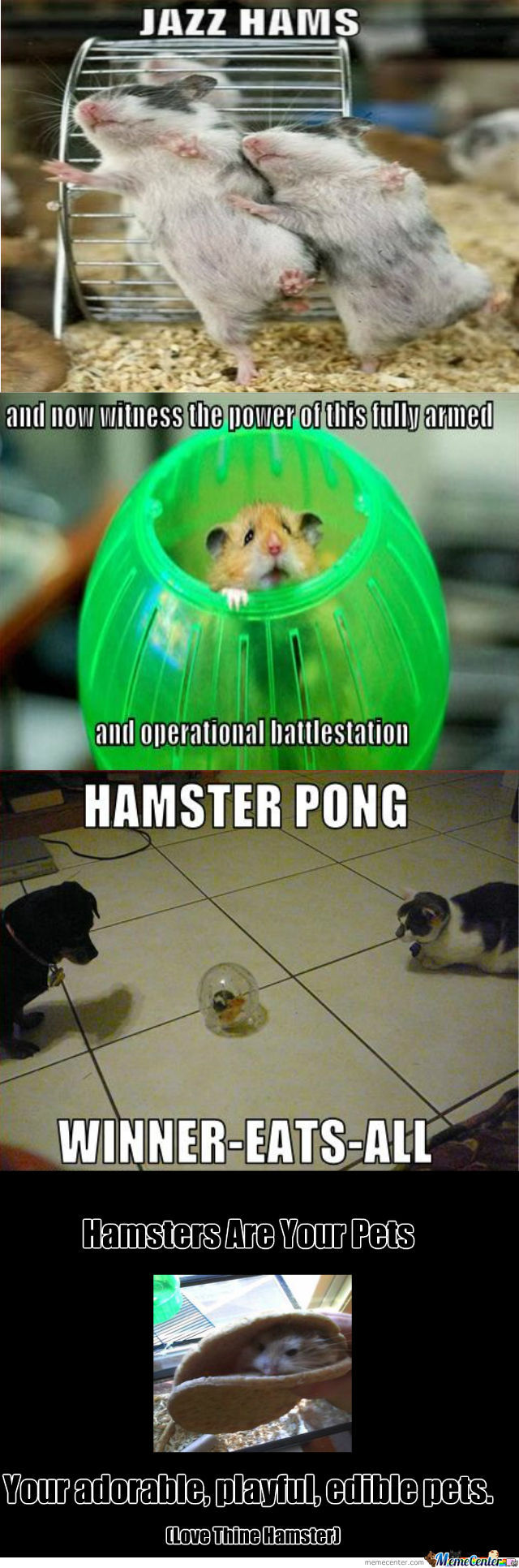 Love Thine Hamster