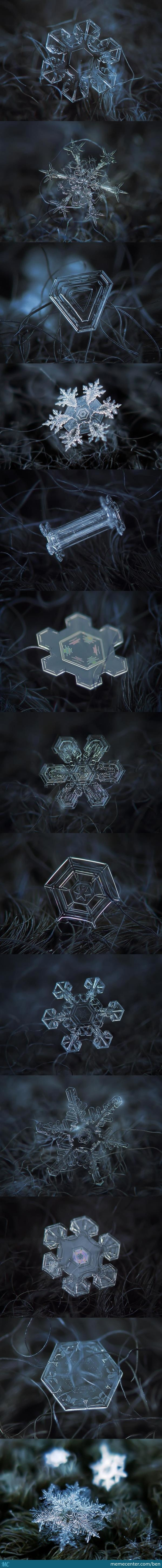 Macro Snowflake Photos By Alexey Kljatov