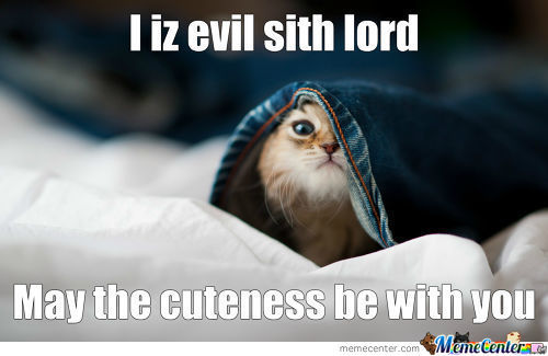 May The Cuteness Be With You!