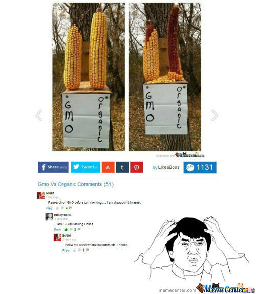 Meaning Of Gmo Corn