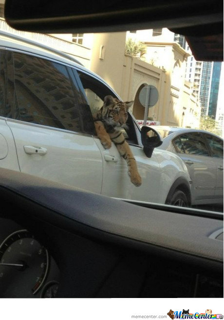 Meanwhile In Dubai