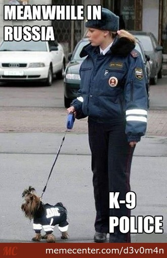 Meanwhile In Russia | K-9 Police