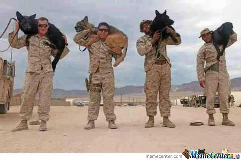 Meanwhile In The Army Bring Your Dog To Afghanistan Day