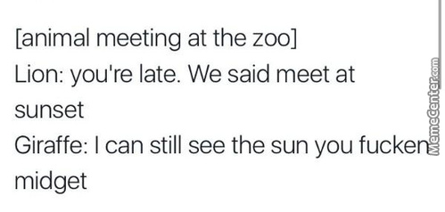 Meanwhile In Zoo Society