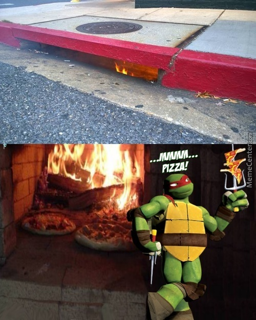 Meanwhile The Turtles...