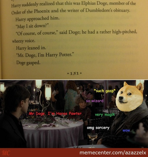 Meet Harry, Mr. Doge......wow