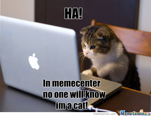 Memecenter. The Perfect Cover For Cats