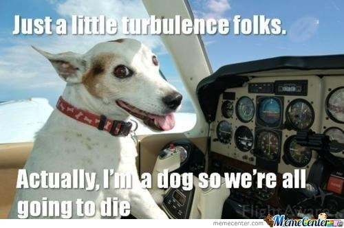 Might Be A Ruff Landing