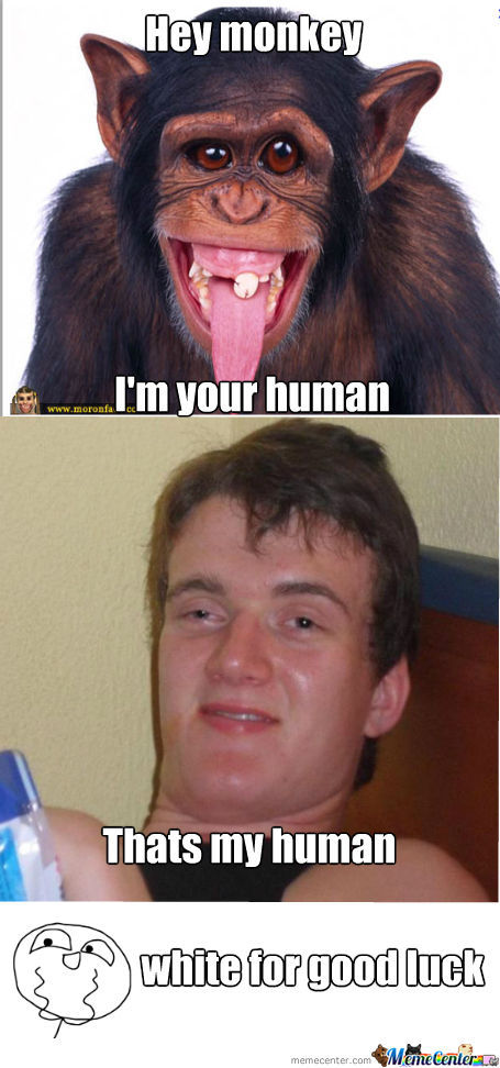 Monkey Im Your Human