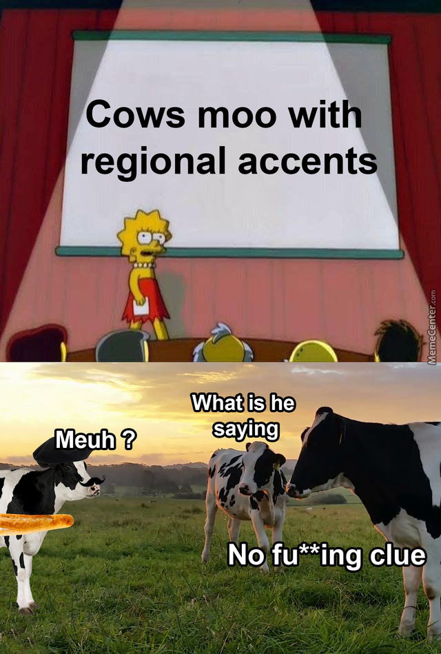 *Moos In French*