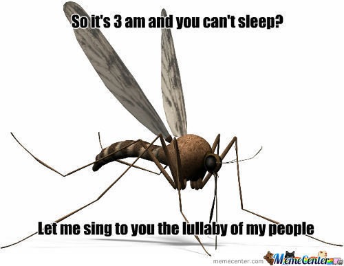Mosquito Lullaby In C Minor