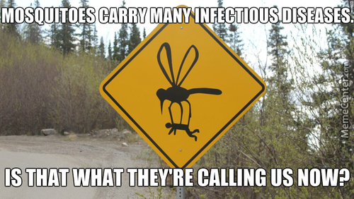 Mosquitoes Carry Man Off Sign