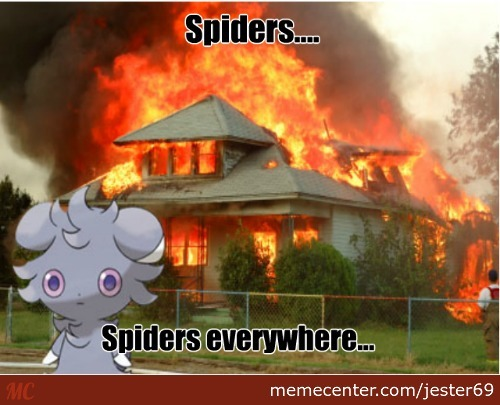 Mrw I See Spider Hatchlings Come Out Of Their Mother ;-;