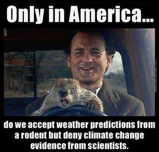 murican science_o_4508107 groundhog memes best collection of funny groundhog pictures,Funny Groundhog Meme