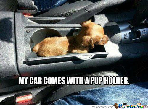 My Car Comes With Pup Holder...