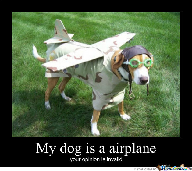 My Dog Is An Airplane