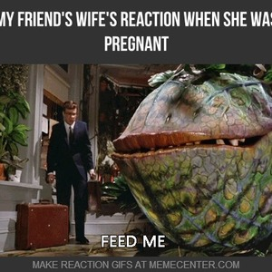 my friend amp 039 s wife amp 039 s reaction when she was pregnant_fb_2592439 my friend's wife's reaction when she was pregnant by
