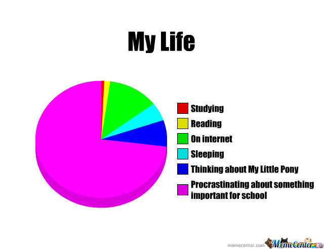 My Life Pie Chart By Naturallynature Meme Center