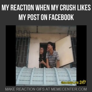 my reaction when my crush likes my post on facebook by