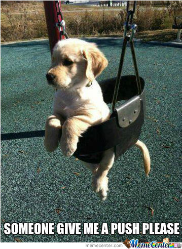 Need A Push Over Here!