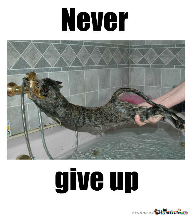 never give up_o_1772195 never give up by lillyray meme center