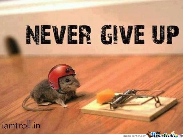 never give up_o_253186 never give up ! by asimon07 meme center
