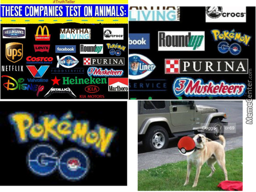 Never Throw A Pokeball At Your Dog