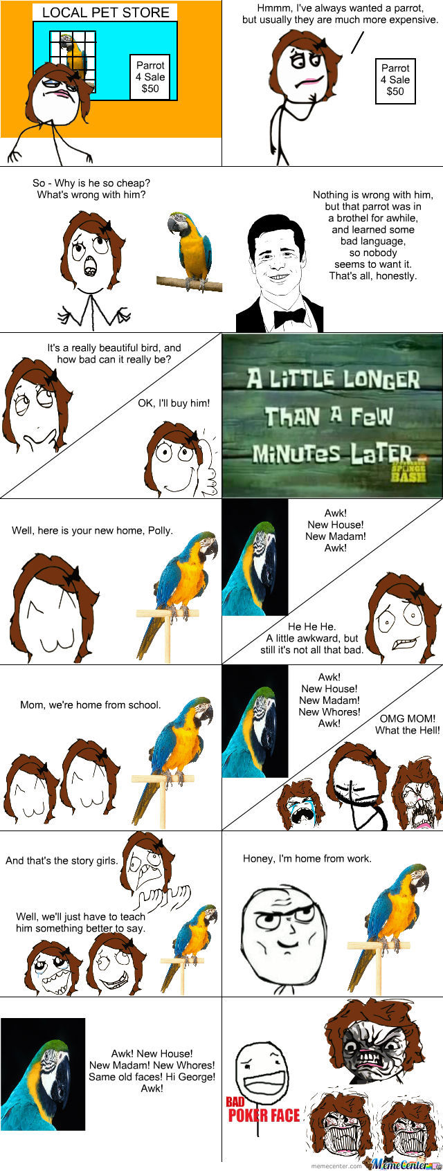 New Parrot - Trouble