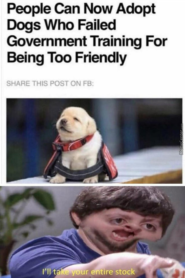 No Dog Can Ever Be Too Friendly