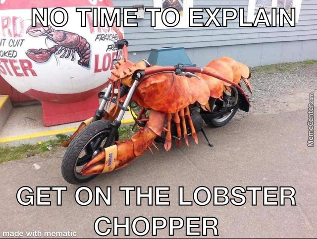 No Hesitation For This Crustacean