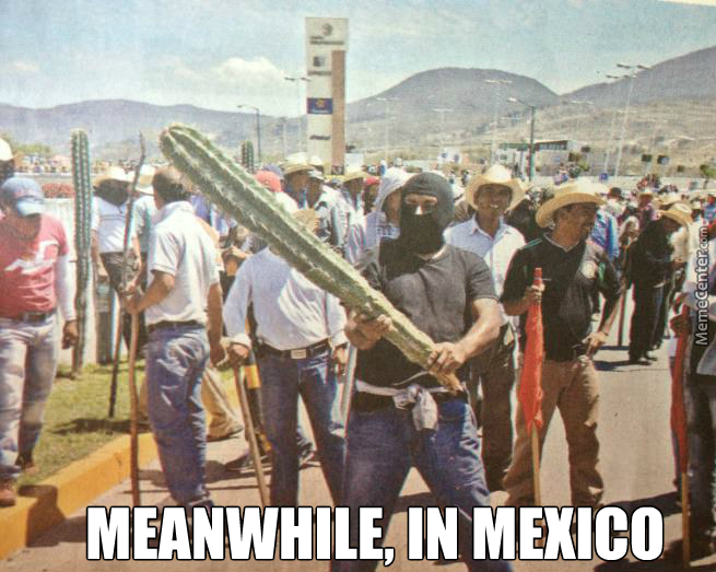 No Mexican Riot Is Complete Without A Cactus, Some Tequila And A Mariachi Band