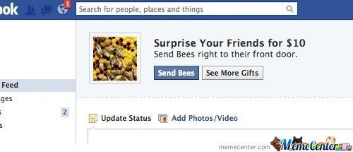 No, Not The Bees!!!