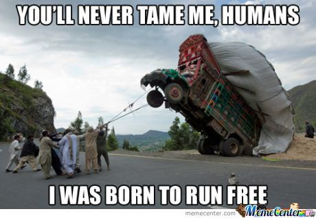 no truck you re not a human by snajath meme center