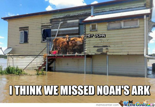 Noah Is Gone Pals