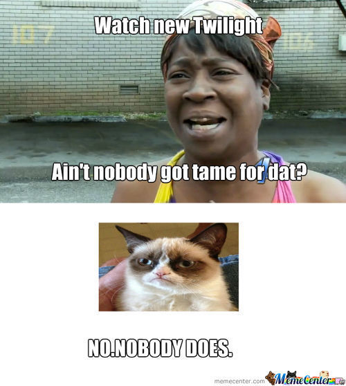 Nobody Got Time For Twilight
