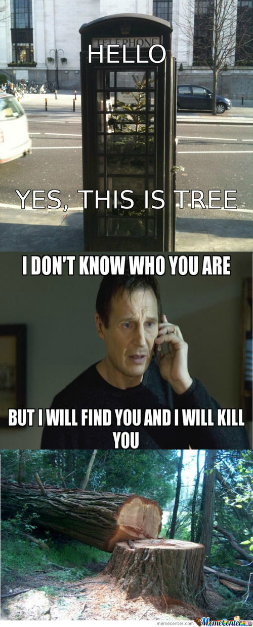 Nobody Is Save, Not Even The Trees!