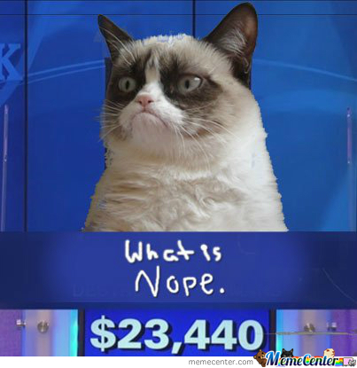 Nope Cat By Recyclebin Meme Center