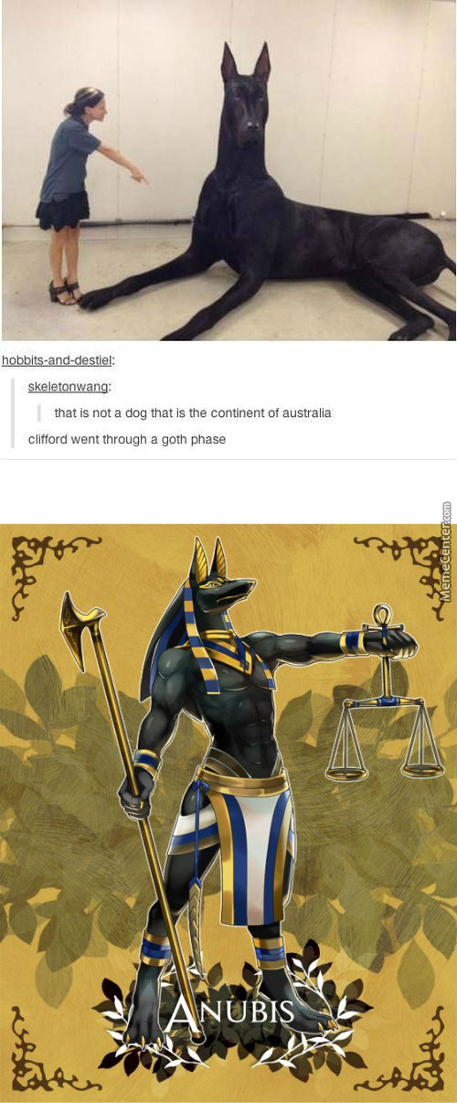 Nope. That, Is No More Than Fucking Anubis I Knew It Was Real Omg Omg!!!!!!