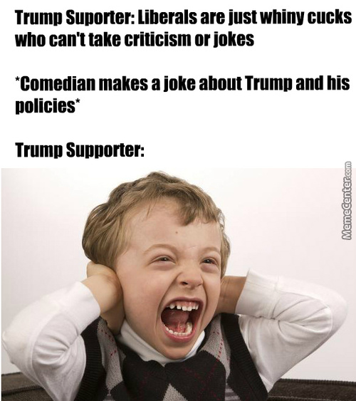 Not Defending Sjw's, Im Just So Sick Of The Hypocrites